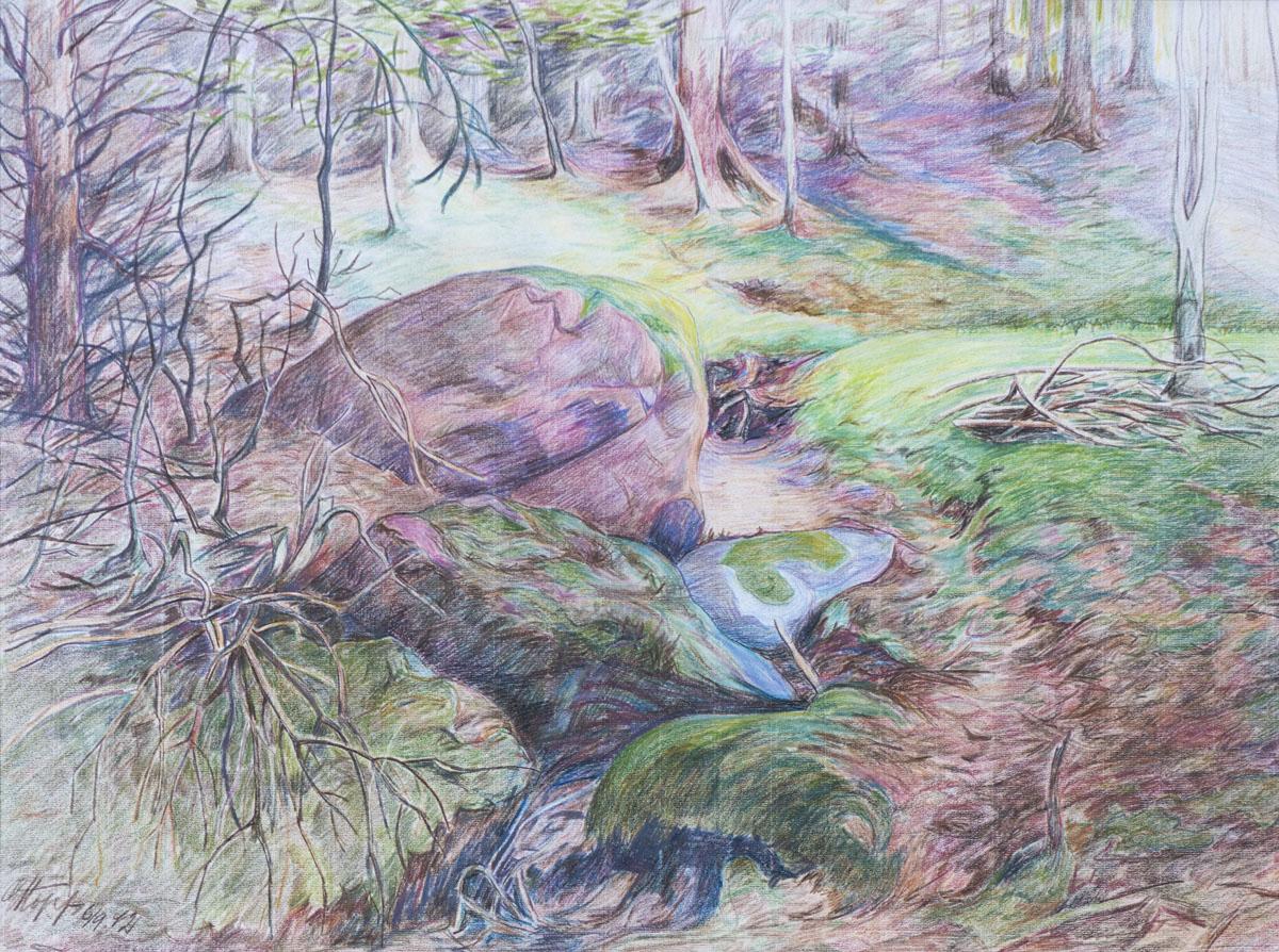 Bachlauf im Bentheimer Wald