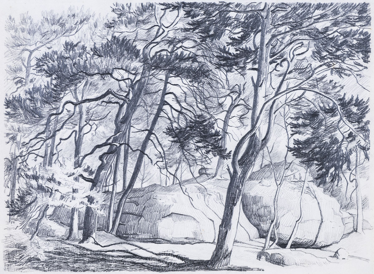 Felsen und Bäume auf dem Isterberg